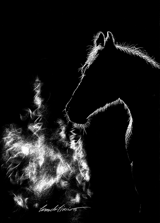 horse-1-1